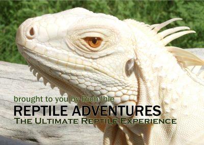 ReptileAdv_2017